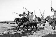 198 / Pferderennen auf dem Wochenmarkt in der Naehe von Moulay Bousselham: AFRIKA, MAR, MAROKKO, MOULAY BOUSSELHAM, 05.03.2011: Pferderennen auf dem Wochenmarkt in der Naehe von Moulay Bousselham. - Marco del Pra / imagetrust - Stichworte: Afrika, Marokko, Maghreb, Maroc, Koenigreich, Koenig, Mohammed VI, Islam, islamisch, Muslim, muslimisch, Arabisch, Berber, Al Maghreb, Maghreb, Nordafrika, Pferde, Pferd, Rennen, Gewehr, schnell, galopp, galoppieren, Tradition, traditionell, Sattel, Gewand, Orient, Geschwindigkeit, Wettlauf, reiten Reiter,
