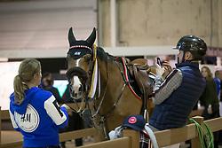 Fredricson Peder, SWE, Hansson WL<br /> Indoor Brabant 2018<br /> © Sharon Vandeput<br /> 9/03/18