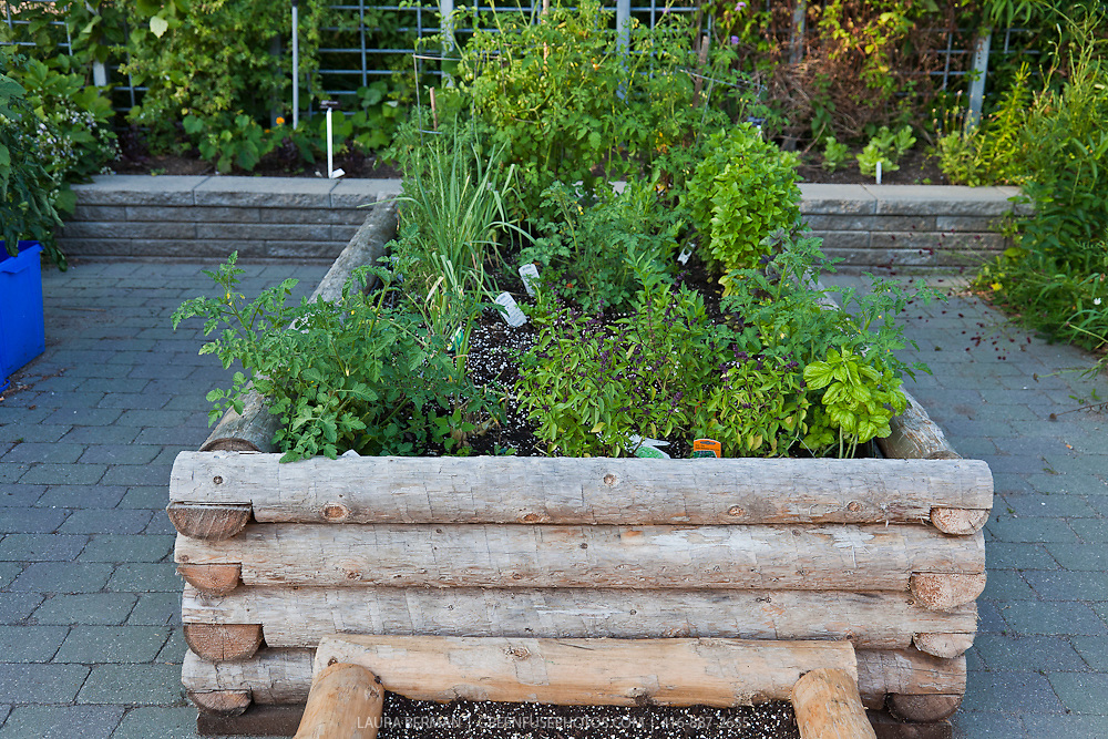 "Container garden of ""log-cabin"" style raised planters."