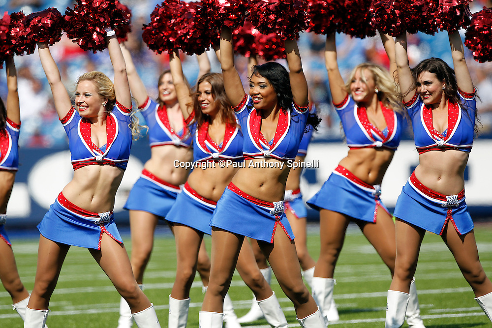 The Buffalo Bills Jills cheerleaders wave pom poms and do a dance routine during the NFL week 3 football game against the New England Patriots on Sunday, September 25, 2011 in Orchard Park, New York. The Bills won the game 34-31. ©Paul Anthony Spinelli