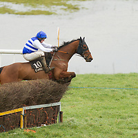 Action from the East Clare Harriers 2015 Killaloe point to point from the East Clare Harriers 2015 Killaloe point to point from the East Clare Harriers 2015 Killaloe point to point from the East Clare Harriers 2015 Killaloe point to point from the East Clare Harriers 2015 Killaloe point to point