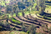 Rice terraces in the Nepal countryside.