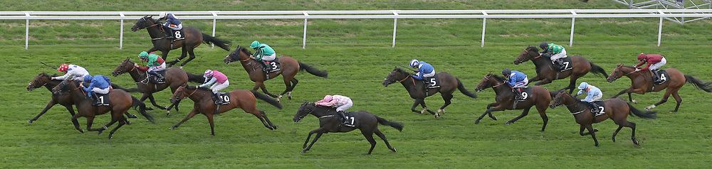 Runners head to the finish of The Porsche Handicap Stakes Race during day two of King George VI Weekend at Ascot Racecourse, Berkshire.