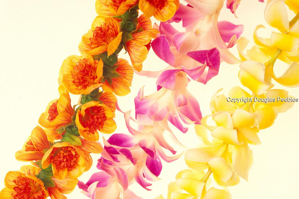 Flower Leis, ilima, orchid, plumeria, Hawaii, USA<br />