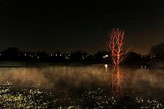 20090404 LIGHTPAINTING - Utterslev Mose