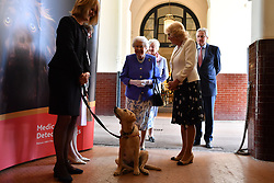 Queen Elizabeth II and the Duchess of Cornwall arrive for the 10th anniversary celebration of the Medical Detection Dogs charity at the Royal Mews, in London.