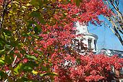 Galbreath Chapel, Athens Campus, Campus Beauty, Fall, Seasons