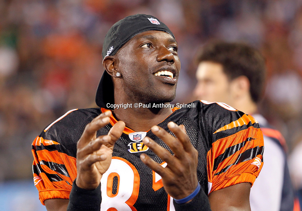 Cincinnati Bengals wide receiver Terrell Owens (81) has a laugh as he watches the game from the sidelines during the NFL Pro Football Hall of Fame preseason football game between the Dallas Cowboys and the Cincinnati Bengals on Sunday, August 8, 2010 in Canton, Ohio. The Cowboys won the game 16-7. (©Paul Anthony Spinelli)