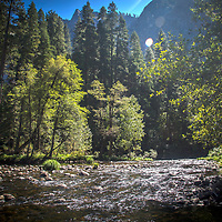 A river and trees are seen inside Yosemite National Park on Sunday, September 22, 2019 in Yosemite, California. (Alex Menendez via AP)