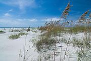 Masonboro Island, Wrightsville Beach, NC