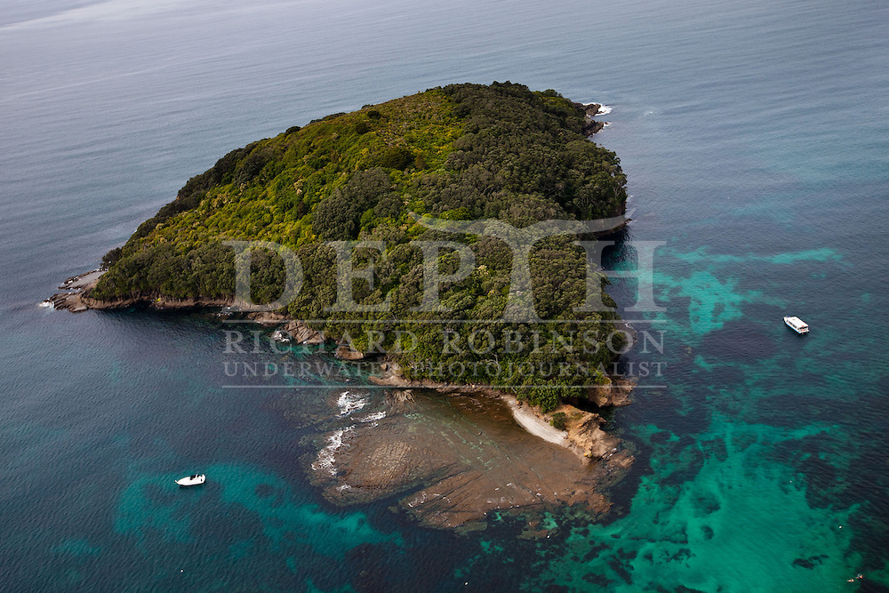 Goat Island marine reserve in the Hauraki Gulf, New Zealand. Thursday 25 October 2012 Photograph Richard Robinson © 2012..