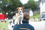 21/09/2014  Bird's eye view…Polly sits upon  Claire Lacy from Co Offaly at the Connemara Pony Show 2014 in Clifden Co. Galway. Photo:Andrew Downes