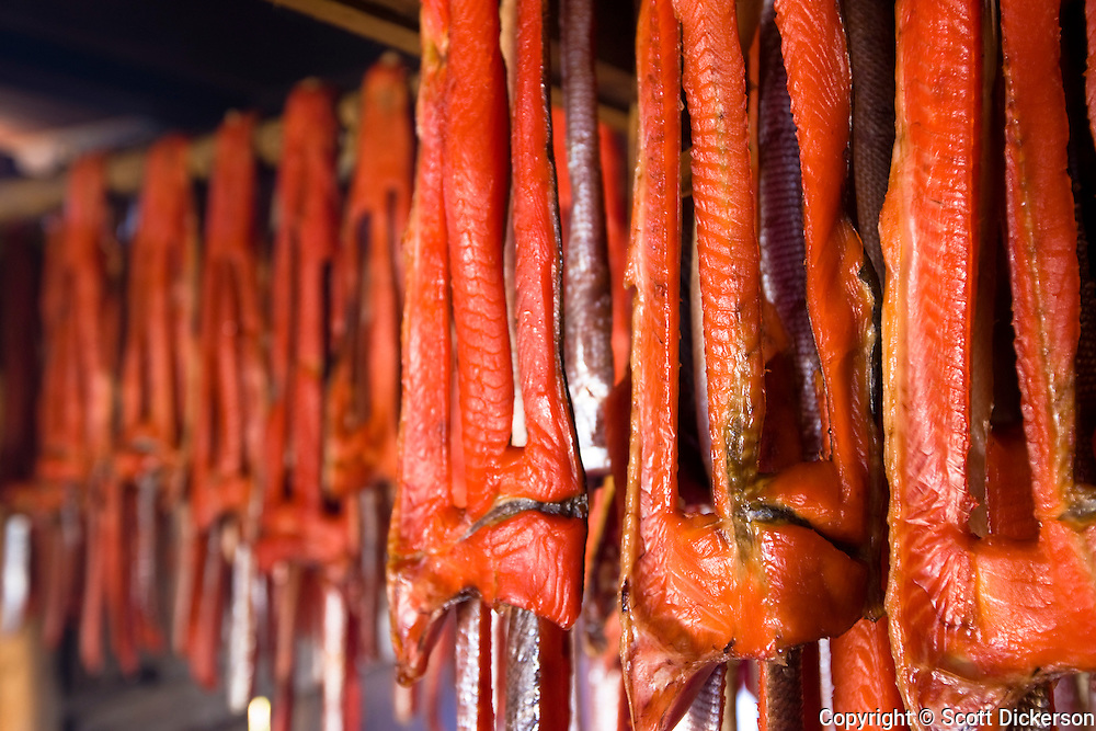 Subsistence sockeye salmon from the Kvichak River is stripped and hung to dry and smoke by native Alaskans in the  village of Igiugig, Bristol Bay, Alaska.