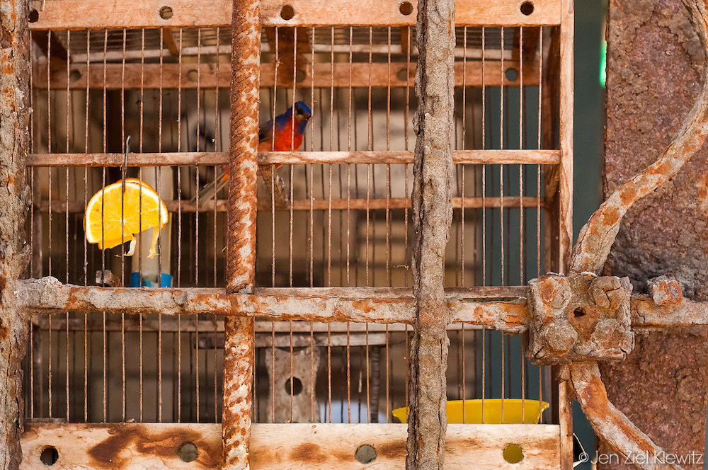 Detail, Centro Habana, Cuba. Photo by Jen Klewitz