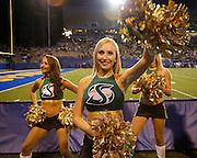 Sacramento State Hornets cheerleaders cheer during a timeout during the season opener against the San Jose State Spartans at San Jose State University's Spartan Stadium in San Jose, California, on August 29, 2013. (Stan Olszewski/ZUMA Press)