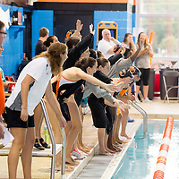 2014 Swim