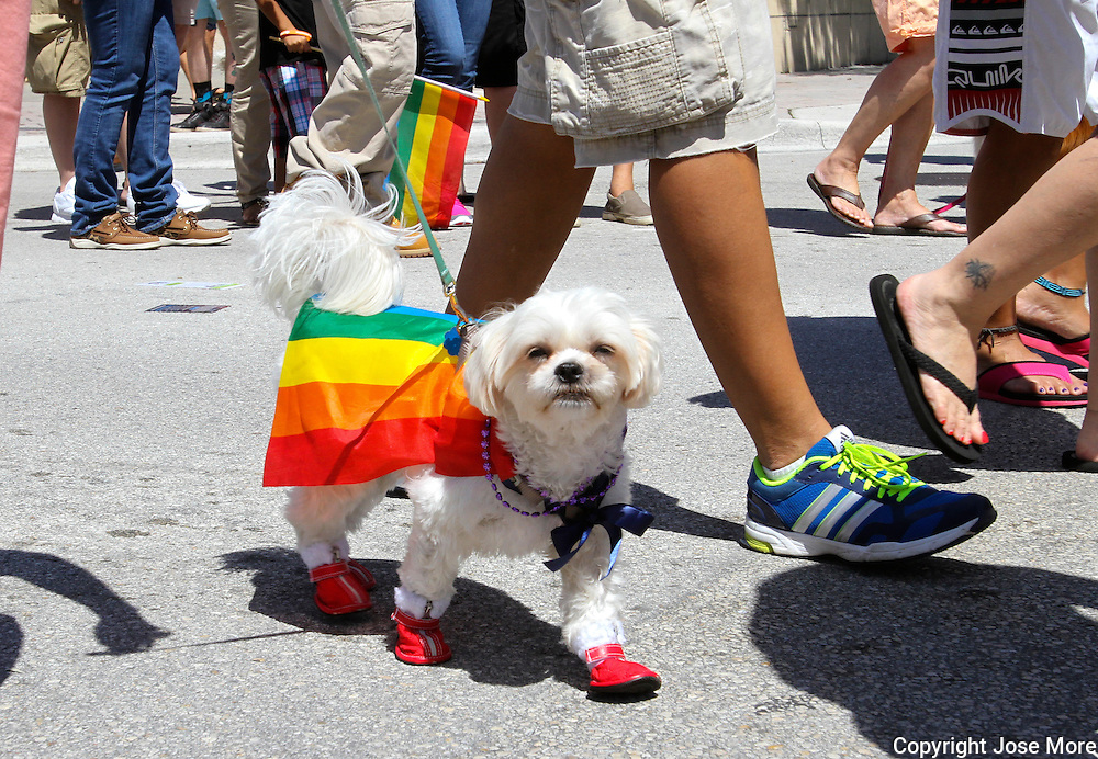 Pride Fest and Gay Pride Parade in Lake Worth Florida.<br />