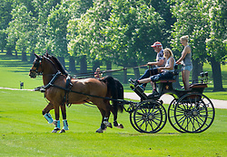 © Licensed to London News Pictures. 08/05/2018. Windsor, UK. A carriage taking part in The Royal Windsor Horse Show exercises on The Long Walk at Windsor Castle ahead of the Royal Wedding of Prince Harry and Meghan Markle. With 12 days to go there is lots of activity in and around the grounds of Windsor Castle. Photo credit: Peter Macdiarmid/LNP
