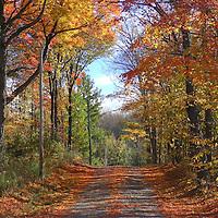 North America, USA, Vermont. Rural road in autumn in Vermont.