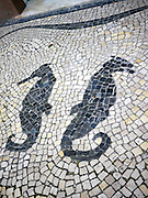 Costa Nova, Portugal sea horse mosaic
