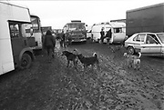 Muddy camp Site, Forest Fayre, 22nd of May 1994.