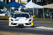 October 3-5, 2013. Lamborghini Super Trofeo - Virginia International Raceway. #80 Al Carter, Mitchum Motorsports, Lamborghini of Palm Beach
