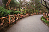 Shakespeare Garden, Central Park, New York City