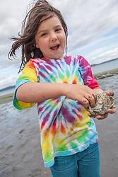 North America, United States, Washington, Bainbridge Island, near Seattle, Oyster harvest with Puget Sound Restoration Fund