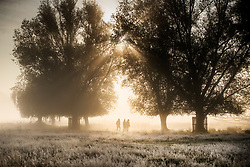 © Licensed to London News Pictures. 09/11/2019. London, UK. People walk on a cold frosty morning in Bushy Park south west London. A cold spell is forecast in parts of the United Kingdom. Photo credit: Peter Macdiarmid/LNP