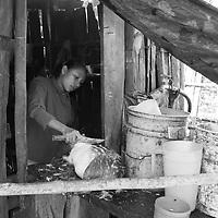 """Título: """"Limpiando la caza, Tepescuintle - Tsimari""""<br /> Técnica: Impresión digital en papel de algodón.<br /> Dimensiones: 14"""" x 9.50"""" pulgadas<br /> Precio $ 1,100.00 USD **El 25% del precio va destinado a comunidades indígenas.<br /> Autor: Melanie L. Wells-Alvarado<br /> +(506) 8753-8231   www.melwellsphotography.com www.awindowintothesoul.com"""