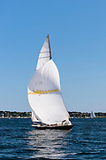 Belle, Lucie, and Leaf sailing in the Newport Classic Yacht Regatta, day one.