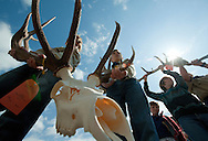 PRICE CHAMBERS / NEWS&amp;GUIDE<br /> Scouts Dillon Weiss and Tyson Danby carry a beetle-cleaned elk skull with an impressive rack as it goes up for sale at the Jackson Hole Boy Scout Elk Antler Auction on Saturday during ElkFest.