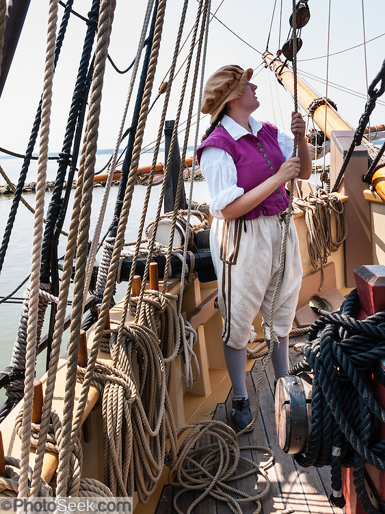 """A costumed historical interpreter adjusts rigging lines to raise sails on the Godspeed ship replica at Jamestown Settlement, Virginia, USA. Godspeed, under Captain Bartholomew Gosnold, was one of three ships (along with Susan Constant and Discovery) of the English Virginia Company on the 1606-1607 voyage that founded Jamestown, the first permanent English colony in the Americas. All 39 passengers and 13 sailors she carried on that voyage were male. Built in 2006, the Godspeed replica is 88 feet long from tip to stern. Jamestown Settlement, operated by the state's Jamestown-Yorktown Foundation, chronicles 1600s Virginia and the convergence of Powhatan Indian, European, and west central African cultures. Created as part of the 350th anniversary celebration in 1957 as Jamestown Festival Park, Jamestown Settlement is adjacent to the complementary """"Historic Jamestowne"""" museum (which is on Jamestown Island, is the actual historic and archaeological site where the first settlers lived, and is run by the National Park Service and Preservation Virginia)."""