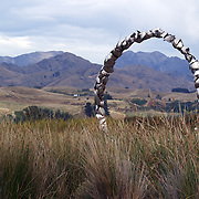 A metal sculpture in front of the modern cellar door at Spy Valley Winery, Lake Timara Road West. Marlborough. New Zealand. 12th February 2011. Photo Tim Clayton.