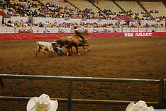 'Rodeo, Cow Palace, San Francisco, photos by Catherine Herrera