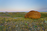 Images from a trip to Red Rock Coulee in Southwestern Alberta.<br /> <br /> The area is home to hundreds of &quot;spherical concretions&quot;, which are huge red rocks that have eroded much more slowly than the surrounding soil. They are similar to hoodoos, which are more commonly found in the badlands of central Alberta.<br /> <br /> Red Rock Coulee is one of those extremely interesting places that is unlike anywhere else that you'll ever visit.<br /> <br /> &copy;2014, Sean Phillips<br /> http://www.RiverwoodPhotography.com