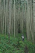 Mountain Biking-New Mexico-Taos/Santa Fe
