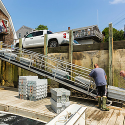 """Jim Merryman (right) is captain of the lobster boat """"Hunter James"""" and owner of Potts Harbor Lobster. Here he is with crew William Maines loading bins of lobsters onto a conveyer belt. Harpswell, Maine."""