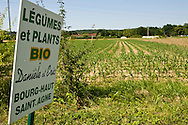 Sign by an organic food growing in a field