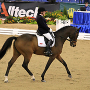 Eleonore Elstone and Why Not G at the 2010 Alltech FEI World Equestrian Games, Lexington, Kentucky.