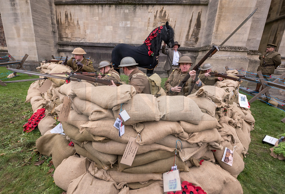 """© Licensed to London News Pictures. 27/10/2018. Bristol, UK. The Royal British Legion launch this year's Bristol Poppy Appeal, """"One thousand poppies, for one hundred years, for one million lives"""" at Bristol Cathedral. For the launch of the 2018 Bristol Poppy Appeal at 11am on 27 October, the Royal British Legion recreated a scene from the end of WW1 outside Bristol Cathedral on College Green, and Colonel Clive Fletcher-Wood read the war poem In Flanders Fields. They were joined by Civic Dignitaries Peaches Golding the Lord Lieutenant of Bristol, City of Bristol High Sheriff Mr Roger Opie, and Bristol's Lord Mayor Cleo Lake. A Bugler and the Bristol Military Wives Choir performed songs from their new album 'Remember'. Staff at MOD Filton filled 400 sandbags with eight tonnes of sand to build trenches and recreate 'Flanders Fields' and planted over 1000 waterproof poppies on College Green. Poppies and sandbags can be sponsored by individuals wanting to remember those who fought and died in conflict. There were re-enactors in WW1 uniform from Somerset Light Infantry (known as the West Country Tommys), as well as medics and nurses with equipment from the time. Bristol's own 'War Horse' (Buzz from Blagdon Horsedrawn Carriages) was on College Green behind the improvised barbed wire to represent the 350,000 horses that left Avonmouth for the frontline during WW1. There are also 10,000 knitted poppies on display both in and outside Bristol Cathedral following 'The Charfield Yarn Bombers' incitement to locals to get knitting to mark the occasion, with a display inside the Cathedral organised by Helen Date. Photo credit: Simon Chapman/LNP"""