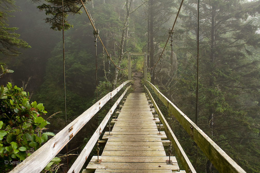 West Coast Trail - Day 3.  A modern hanging bridge crosses above the chasm of Tsocowis Creek.