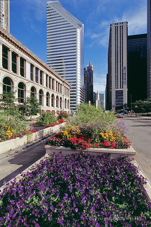 Planter boxes with flowers on Michigan Avenue, downtown Chicago, Illinois