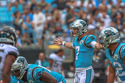 Sunday, October 6, 2019; Charlotte, N.C., USA;  Carolina Panthers quarterback Kyle Allen (7) calls the play to the line during an NFL game against the Jacksonville Jaguars at Bank of America Stadium. The Carolina Panthers beat the Jacksonville Jaguars 34-27. (Brian Villanueva/Image of Sport)