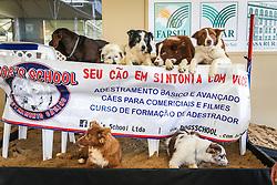 Adestramento de cães na 39ª Expointer, Exposição Internacional de Animais, Máquinas, Implementos e Produtos Agropecuários. A maior feira a céu aberto da América Latina,  promovida pela Secretaria de Agricultura e Pecuária do Governo do Rio Grande do Sul, ocorre no Parque de Exposições Assis Brasil, entre 27 de agosto e 04 de setembro de 2016 e reúne as últimas novidades da tecnologia agropecuária e agroindustrial. FOTO: Alessandra Bruny / Agência Preview