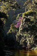 Domingos Martins_ES, Brasil...Passagem do Rio Jucu ao lado de trecho da estrada historica denominada Rota Imperial da Estrada Real, antiga estrada Dom Pedro de Alcantra...Jacu river next to the ancient Rota Imperial, know as Dom Pedro de Alcantara road...Foto: LEO DRUMOND / NITRO