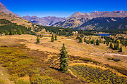 Fall color along the San Juan Skyway from Molas Pass, San Juan National Forest, Colorado USA