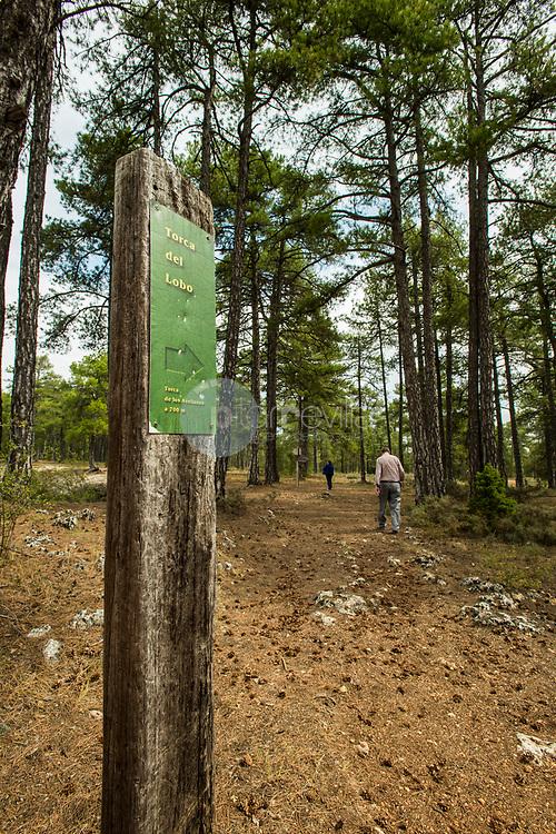 Monumento Natural Torcas de Palancares. Serranía Baja de Cuenca. ©Antonio Real Hurtado / PILAR REVILLA