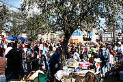New Orleans, Louisiana. United States. February 28th 2006..The Zulu Parade on Saint Charles Avenue.
