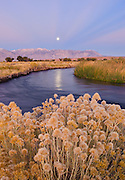 Moonset at dawn over the Owens River and Sierra Nevada mountains near Bishop, California